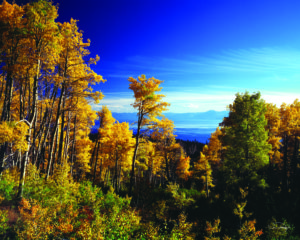 Fall colors and scenery in Lake Tahoe
