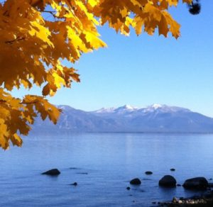 Fall Foliage Lake Tahoe